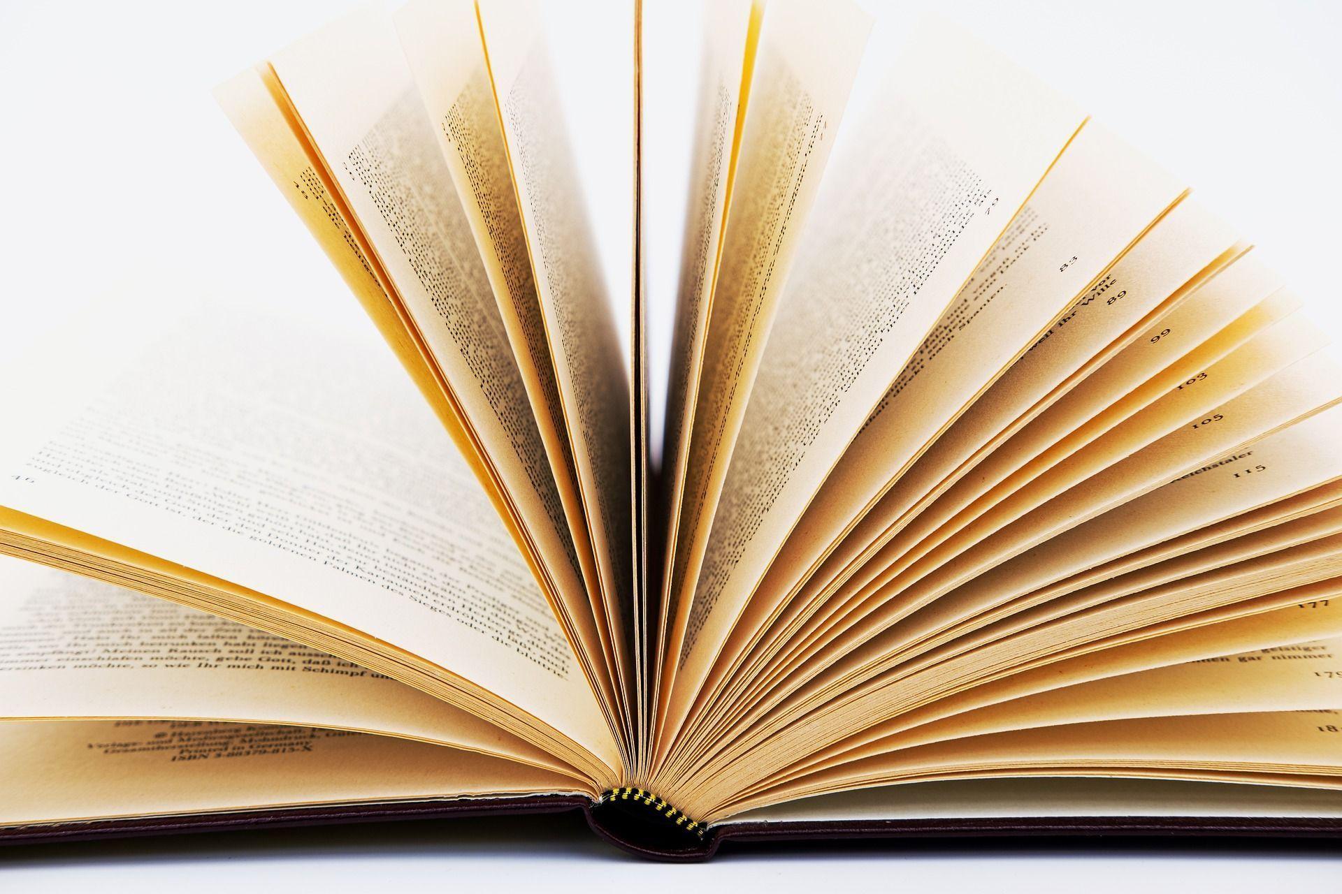 Einen Roman in einem Monat schreiben